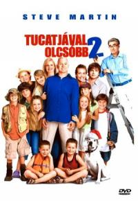 Cheaper by the Dozen 2 (2005)