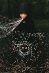 Björk: Volumen (1999)
