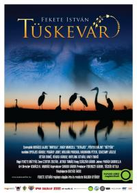 Tüskevár (2012)