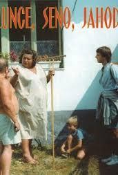 Slunce, seno, jahody (1984)
