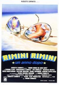 Rimini Rimini - Un anno dopo (1988)