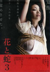 Hana to hebi 3 (2010)