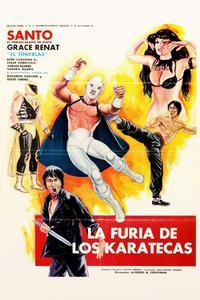 La furia de los karatecas (1982)