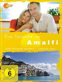 Ein Sommer in Amalfi (2013)