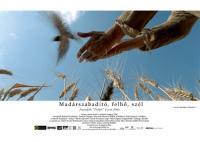Madárszabadító, felhő, szél (2006)