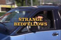 Columbo: Strange Bedfellows (1995)