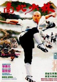 Nan bei Shao Lin (1986)