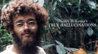 Terence McKenna's True Hallucinations (2016)